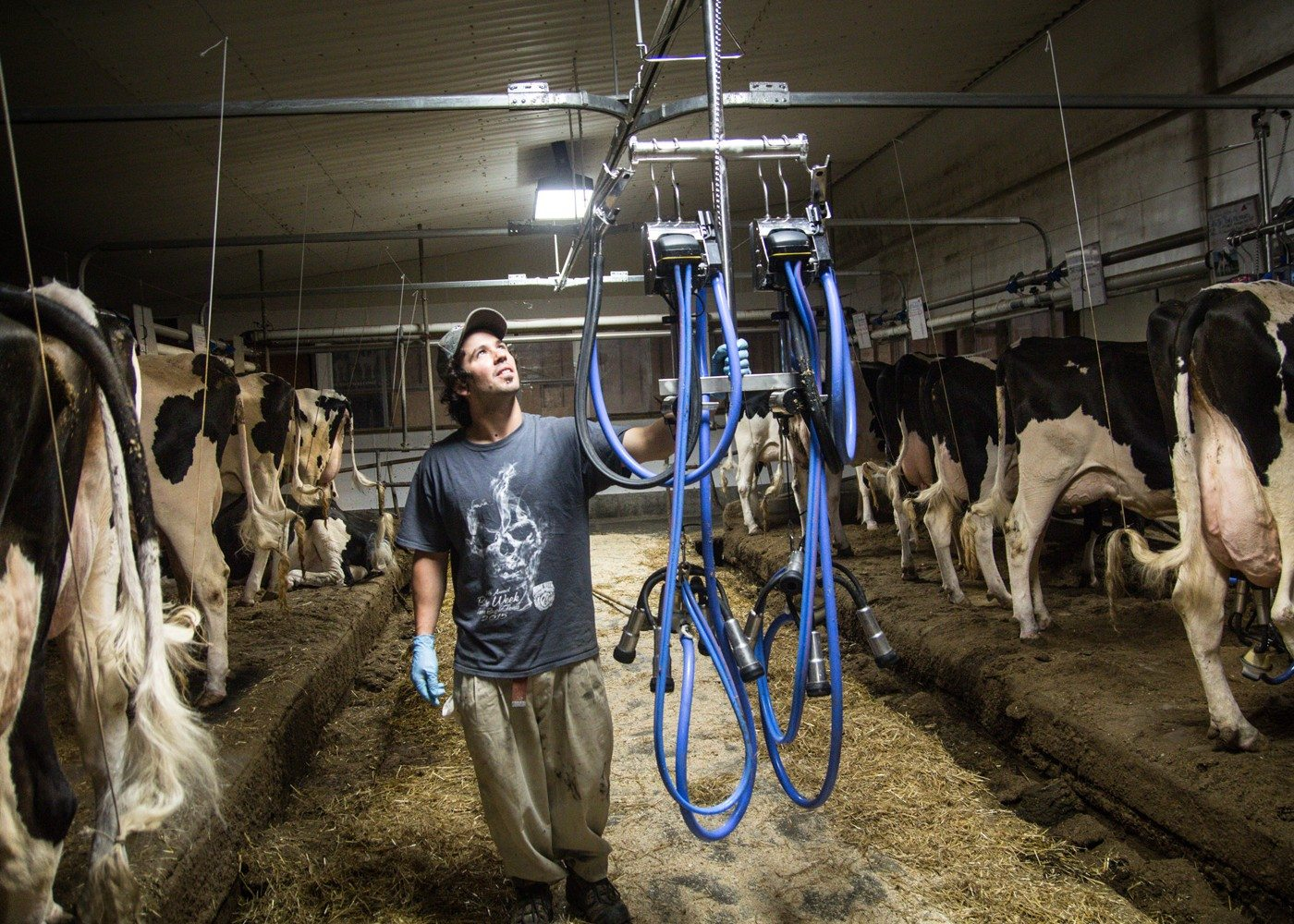 Eric Patenaude, 33, co-owner and manager of La Ferme Gillette. Photo: David Trattles
