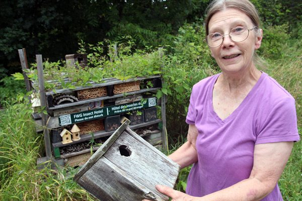 Sandy Garland, head of the insect hotel project at Fletcher Wildlife Garden. Photo: David Trattles