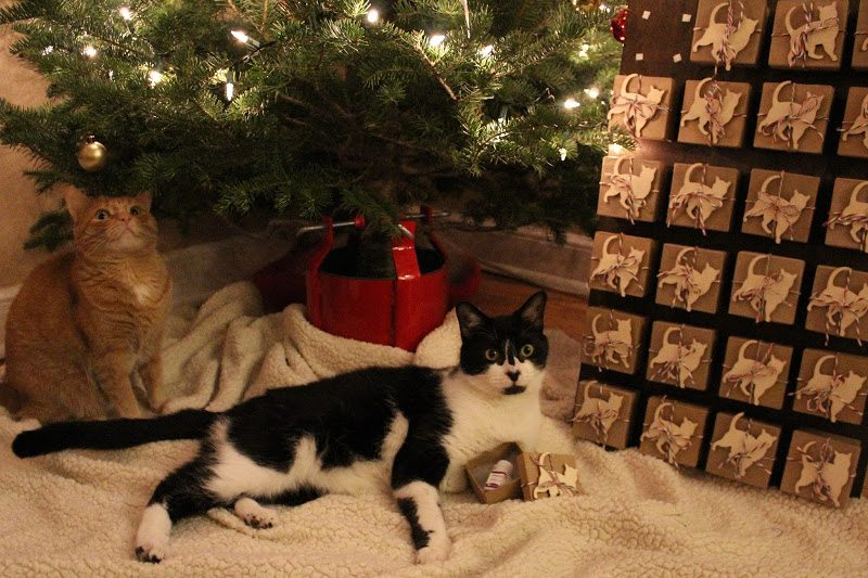 Just one of the pages in Liz Wheeler's Four Little Paws' advent calendar